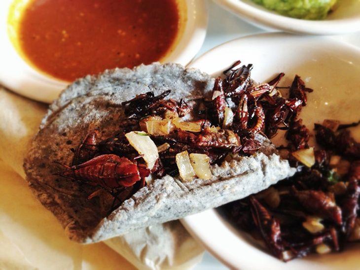 3 restaurantes para probar la comida más exótica de la Ciudad de México