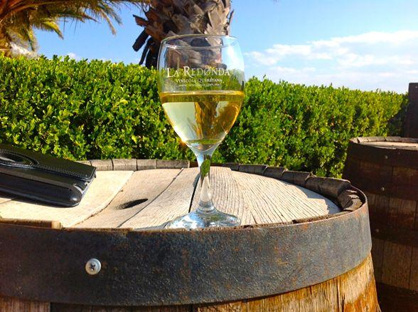 3 viñedos queretanos para escaparse un fin de semana imagen