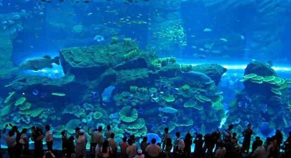 Así es el Dubai Mall, el centro comercial más lujoso del mundo imagen
