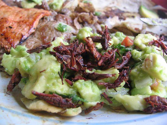 Redescubre la cocina oaxaqueña en Corazón de Maguey  imagen