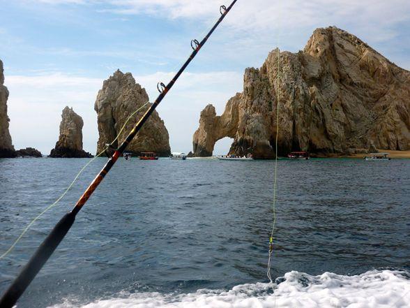 Si sabes pescar, esto puede hacerte millonario imagen