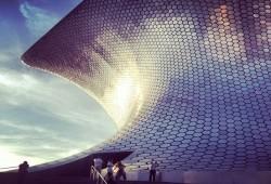 Viaje por el arte y el mundo submarino en Polanco